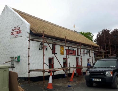 Larkins gets new Thatch!